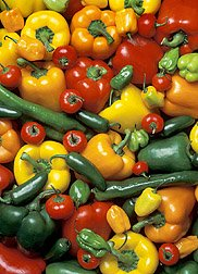 how to grow peppers and how to start  a vegetable garden