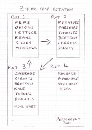 how to design a vegetable garden plan layout