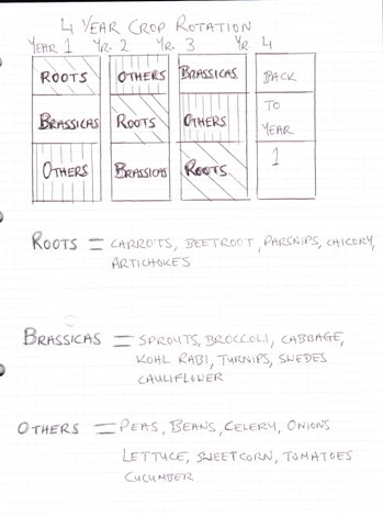 vegetable garden layout plans